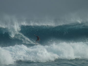 Greg Punch Surf Small